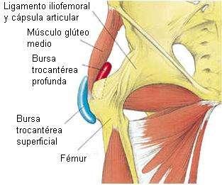 ¿Tenes inflamado un lado de la Cadera? Entra es IMPORTANTE